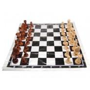 Преносим шах