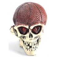 Сувенирен череп