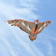 Хвърчило - орел