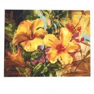 Картина по номера - Жълти цветя, 40х50см