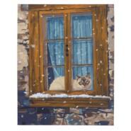 Картина по номера - Котка, 40х50см